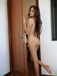 Perfect Brunette Li Moon Nude On The Bed 13