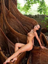 Melisa Virgin Forest 07
