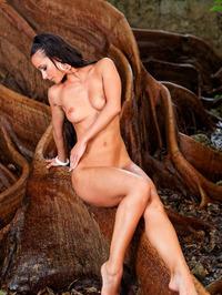 Melisa Virgin Forest 10
