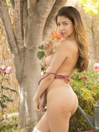 Delightful Nina North Srtips To Naked 15