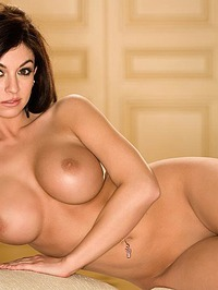 Kaytee Bees Delicious Curves 04