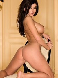 Kaytee Bees Delicious Curves 14