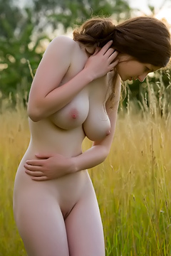 Susann - Lavendel