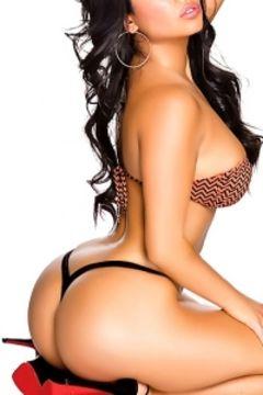 Busty Sexy Girls